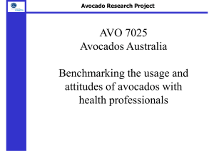 AVO 7025 Avocados Australia Benchmarking the usage and attitudes of avocados with