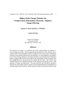 Higher-Order Image Statistics for Unsupervised, Information-Theoretic, Adaptive, Image Filtering Abstract