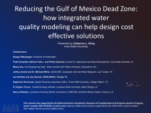 Reducing the Gulf of Mexico Dead Zone: how integrated water effective solutions