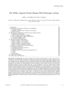 The WNKs: Atypical Protein Kinases With Pleiotropic Actions
