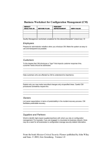 Business Worksheet for Configuration Management (CM) Employees