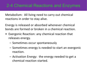 2-4 Chemical Reactions and Enzymes
