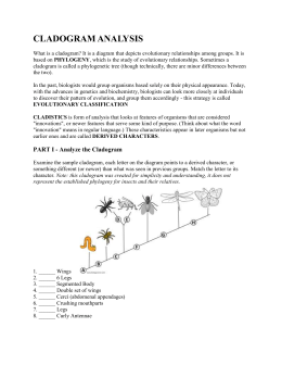 cladogram worksheet answers key kidz activities. Black Bedroom Furniture Sets. Home Design Ideas