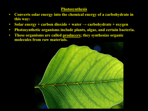 Photosynthesis this way: