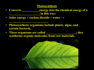 Photosynthesis ____________________in this way: _________________________ Converts ___________energy into the chemical energy of a