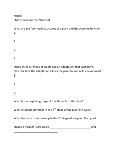 Name:  ___________________________________________________ Study Guide for the Plant test