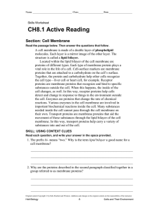 CH8.1 Active Reading Section: Cell Membrane