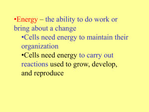 •Energy – •Cells need energy the ability to do work or