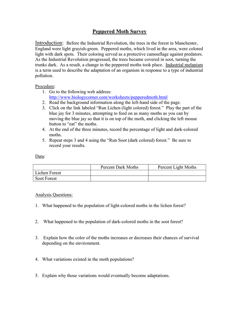 Peppered Moth Simulation Worksheet - Checks Worksheet