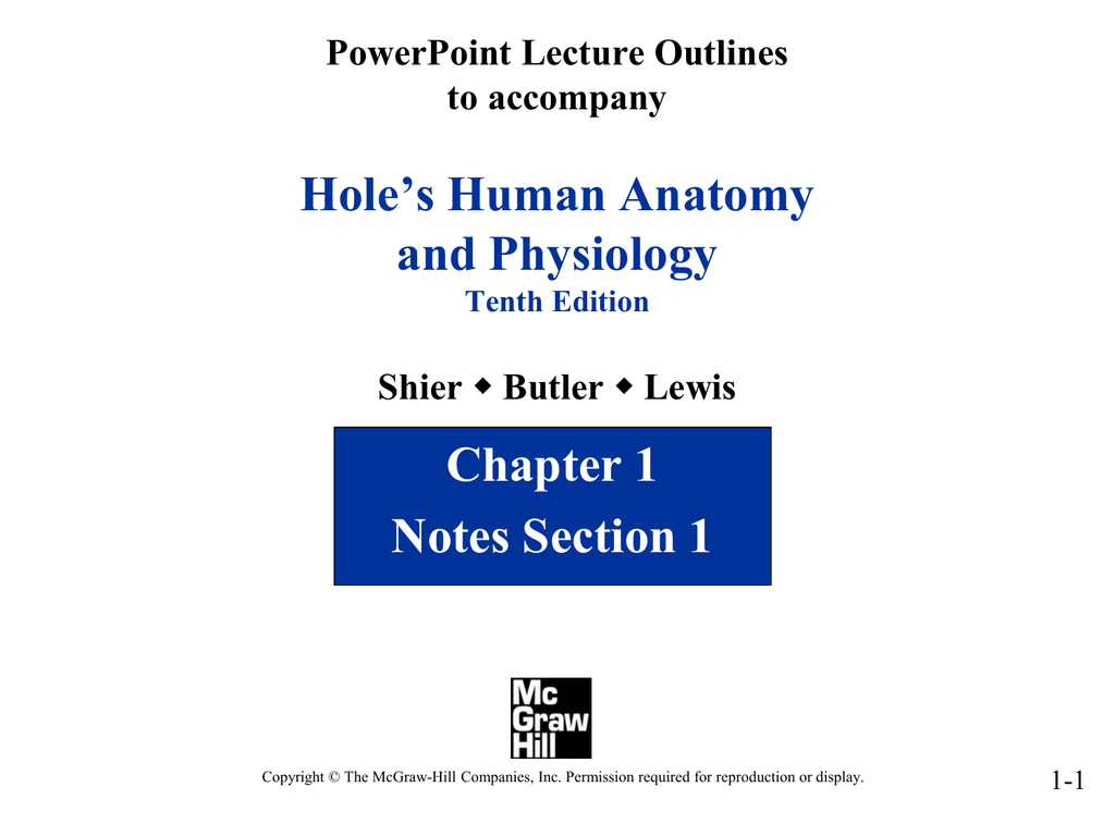 Holes Human Anatomy And Physiology Chapter 1 Notes Section 1