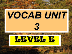 VOCAB UNIT 3 LEVEL E