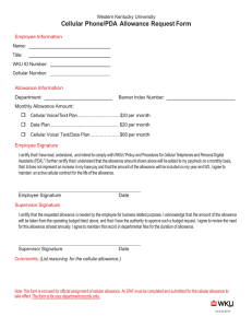 Cellular Phone/PDA Allowance Request Form