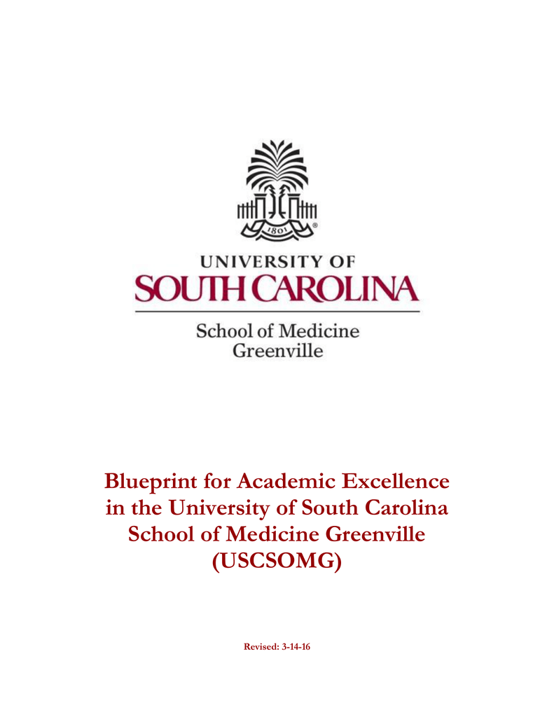 Blueprint for academic excellence in the university of south blueprint for academic excellence in the university of south carolina uscsomg malvernweather Images