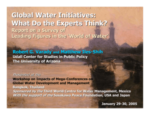 Global Water Initiatives: What Do the Experts Think? Leading Figures in the