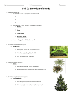 Unit 2: Evolution of Plants
