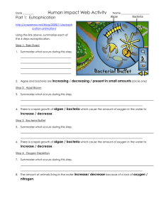 Human Impact Web Activity Part 1:  Eutrophication
