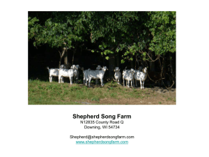 Shepherd Song Farm N12835 County Road Q Downing, WI 54734