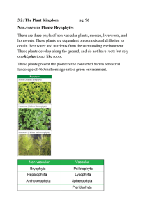 3.2: The Plant Kingdom  pg. 96 Non-vascular Plants: Bryophytes