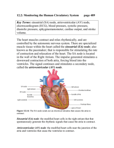 12.2: Monitoring the Human Circulatory System page 489  Key Terms