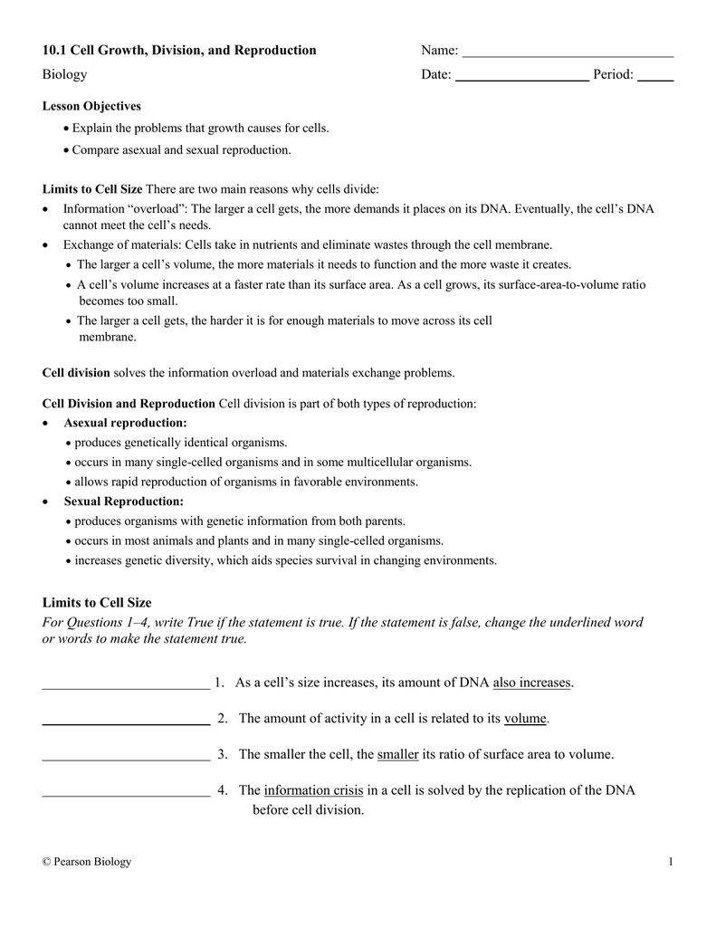 Cell division and asexual reproduction worksheet