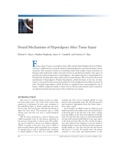 F Neural Mechanisms of Hyperalgesia After Tissue Injury