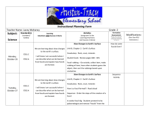 Instructional Planning Form