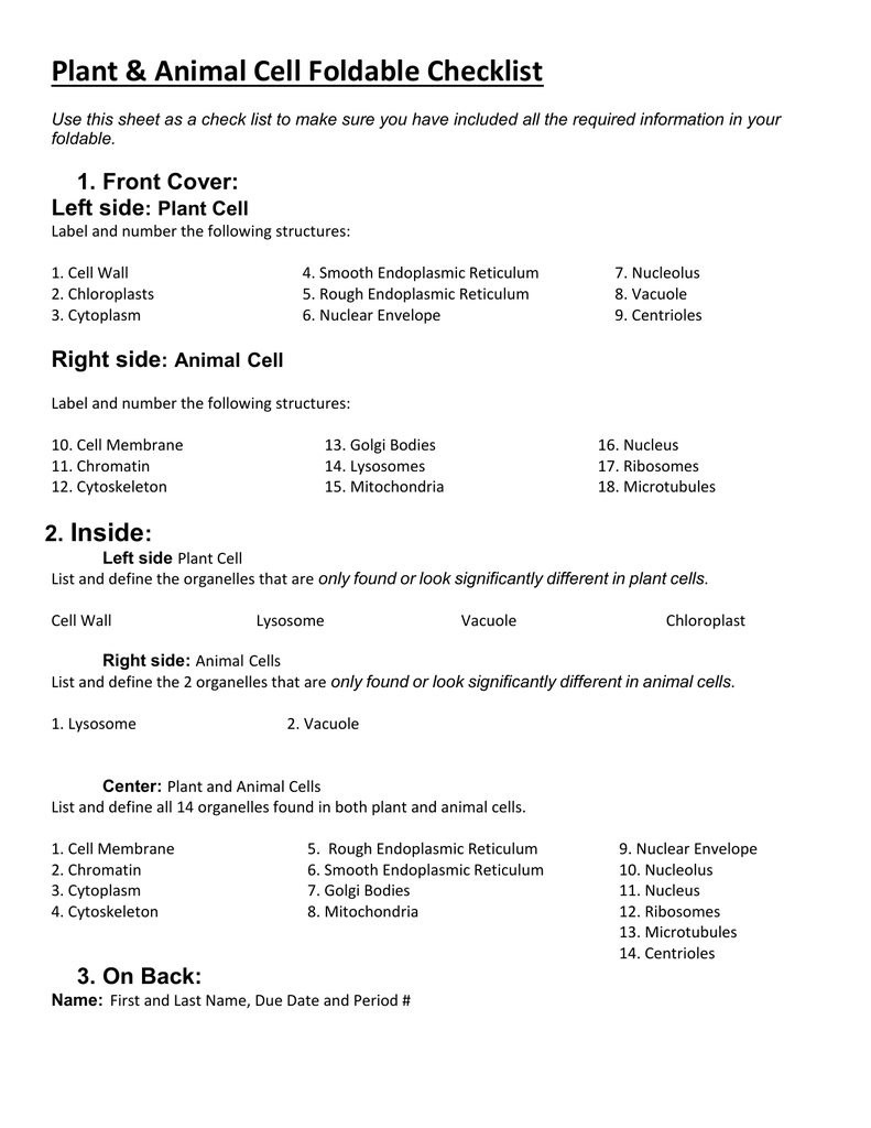 Plant & Animal Cell Foldable Checklist