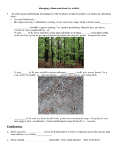 Managing a Hardwood forest for wildlife