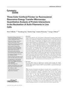 Three-Color Confocal F€ orster (or fluorescence) Resonance Energy Transfer Microscopy: