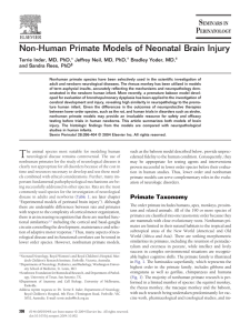 Non-Human Primate Models of Neonatal Brain Injury Bradley Yoder, MD,