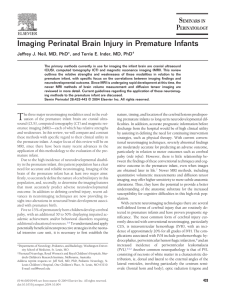 Imaging Perinatal Brain Injury in Premature Infants