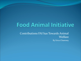 Contributions FAI has Towards Animal Welfare By Erica Chamney
