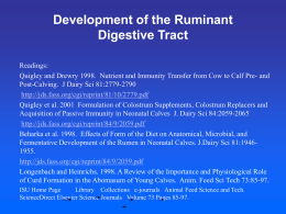 Development of the Ruminant Digestive Tract