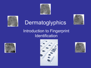Dermatoglyphics Introduction to Fingerprint Identification