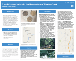 E. coli Contamination in the Headwaters of Plaster Creek Introduction Conclusions
