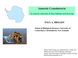 Antarctic Cyanobacteria PAUL A. BROADY School of Biological Sciences, University of
