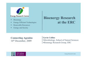 Bioenergy Research at the ERC Connecting Agendas 16