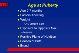 Age at Puberty