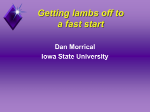 Getting lambs off to a fast start Dan Morrical Iowa State University