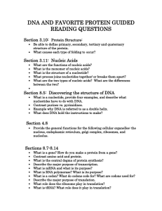 DNA AND FAVORITE PROTEIN GUIDED READING QUESTIONS  Section 3.10: