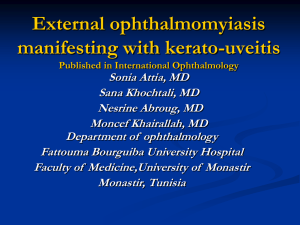 External ophthalmomyiasis manifesting with kerato-uveitis