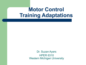 Motor Control Training Adaptations Dr. Suzan Ayers HPER 6310