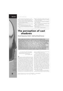 The perception of cast shadows
