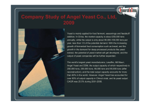 Company Study of Angel Yeast Co., Ltd, 2009