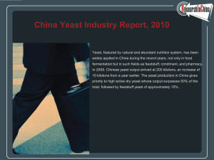 China Yeast Industry Report, 2010