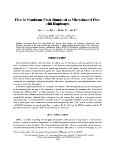 Flow in Membrane Filter Simulated as MicroChannel Flow with Diaphragm