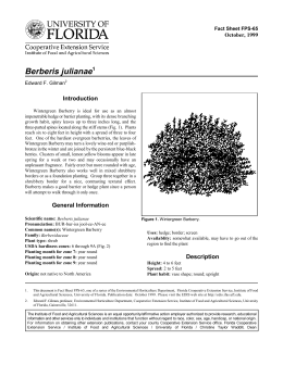 Berberis julianae Introduction October, 1999 Fact Sheet FPS-65