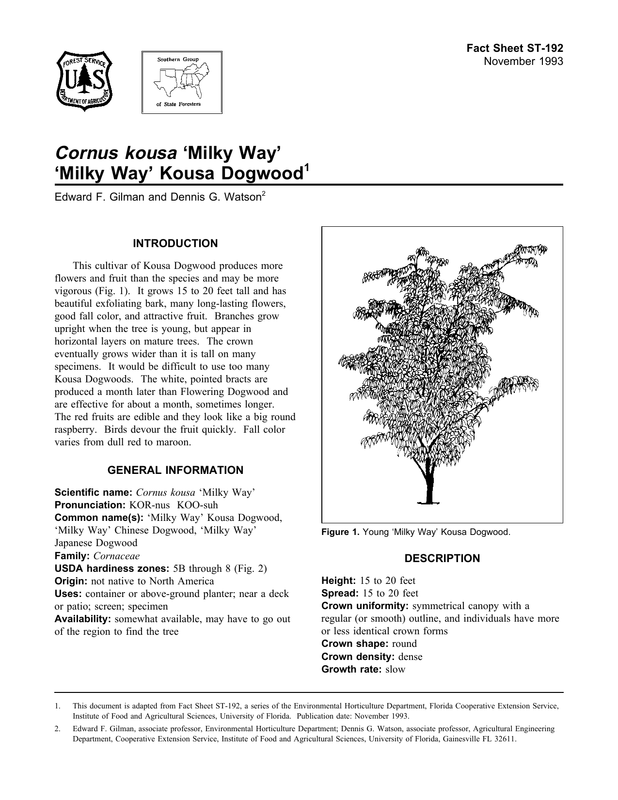 Cornus kousa milky way milky way kousa dogwood fact sheet st 192 1 mightylinksfo
