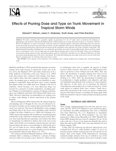Effects of Pruning Dose and Type on Trunk Movement in