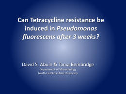 Can Tetracycline resistance be Pseudomonas fluorescens after 3 weeks?